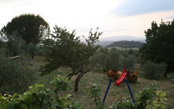Agriturismo in Tuscany for holidays with kids